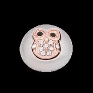 pdro-owl.png