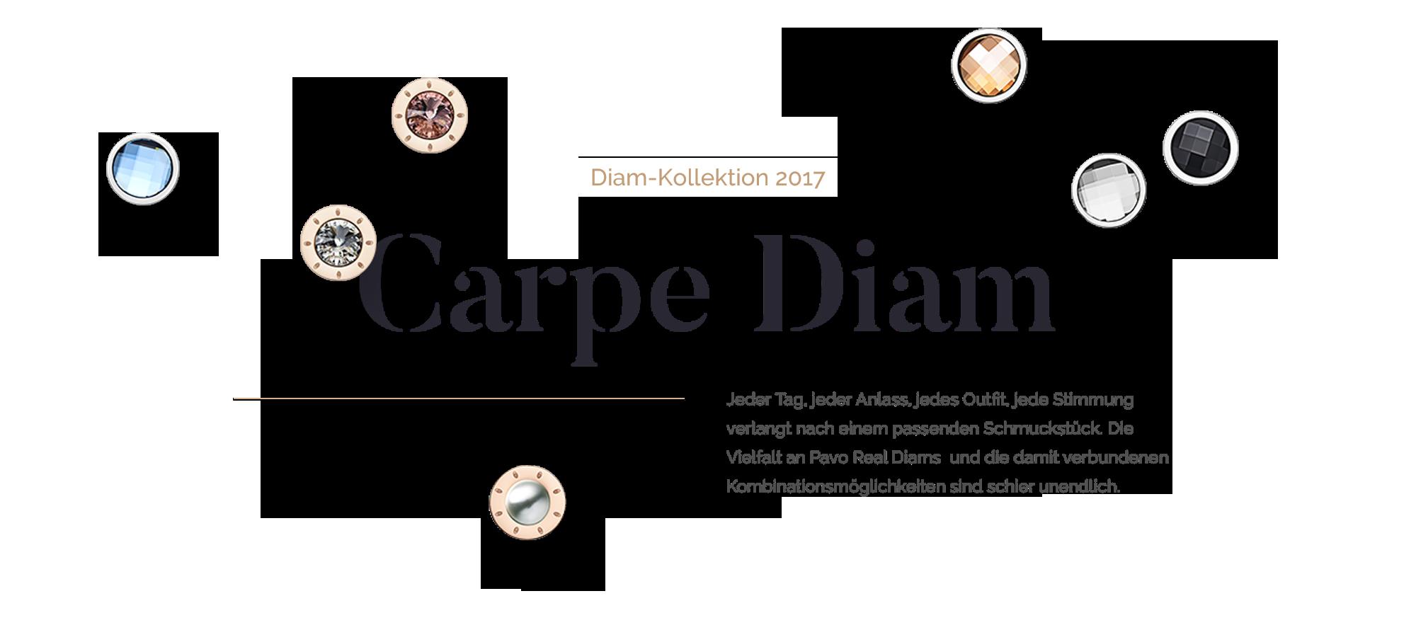 Carpe Diam 2017